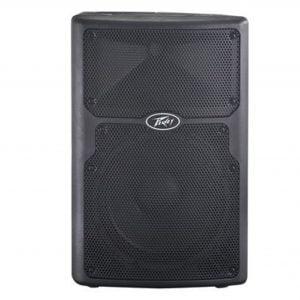 Peavey PVX-10 Passive Loudspeaker