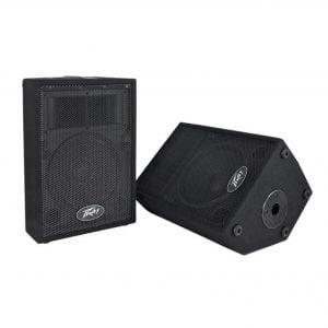 Peavey PVi 10 (Pair) 2-Way Speaker