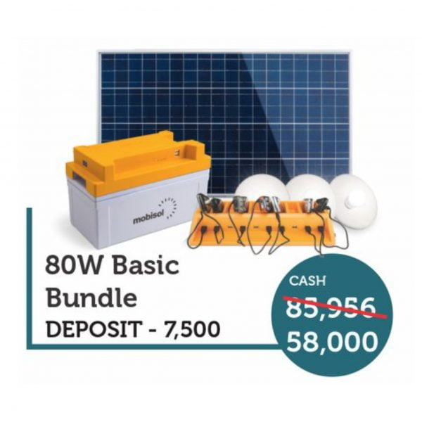 Mobisol 80W Basic Solar Package